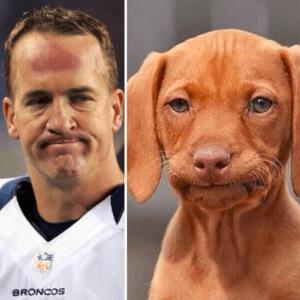 Manning NFL Retirement