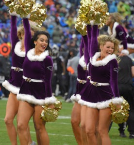 Baltimore Ravens NFL Week 17